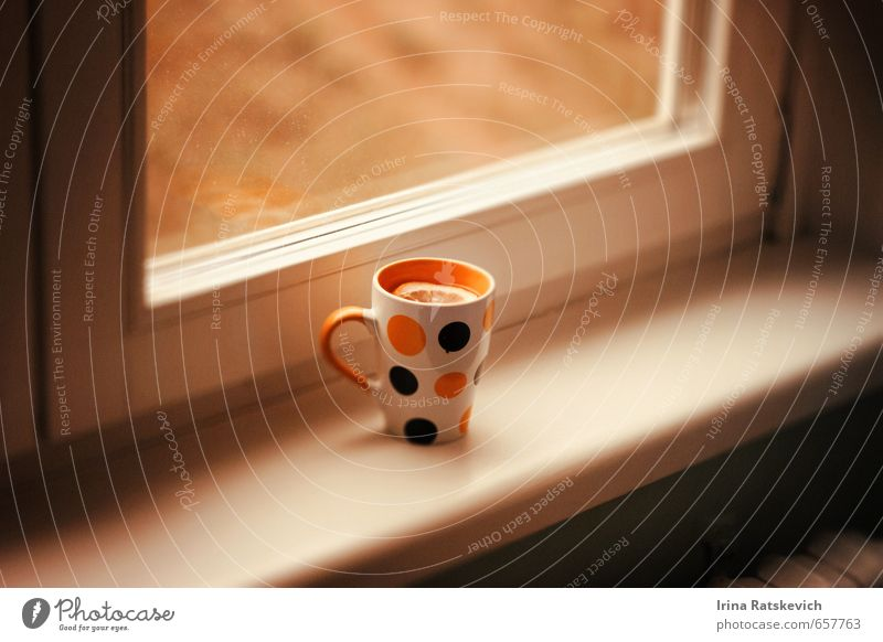 Stadt Farbe Freude kalt gelb Leben Gefühle Freiheit Glück Glas Getränk niedlich Gelassenheit Tee Geborgenheit Zitrone