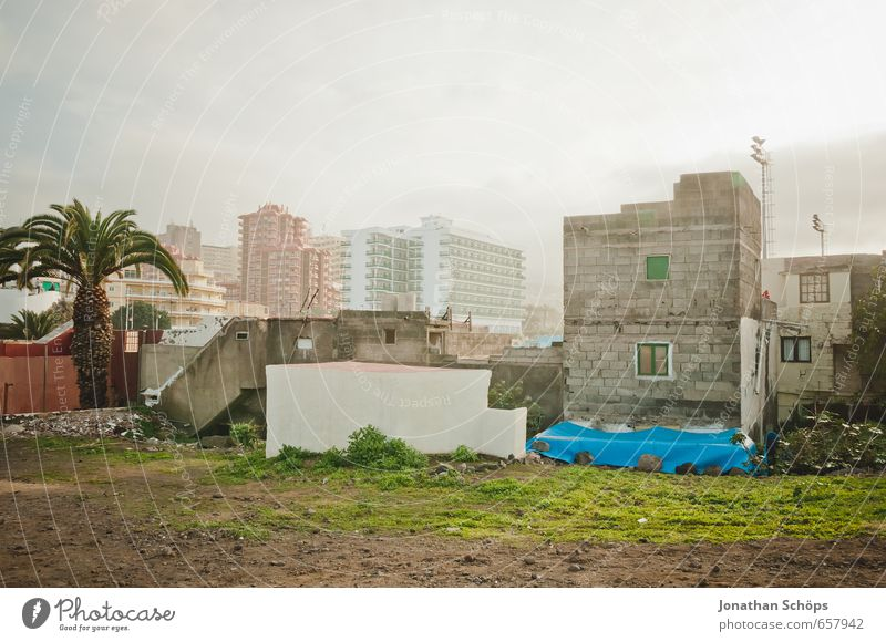 Puerto de la Cruz / Teneriffa V Pflanze Gras Kanaren Spanien Stadt Hafenstadt Stadtzentrum Skyline bevölkert überbevölkert Haus Einfamilienhaus Hochhaus Bauwerk