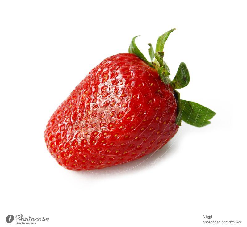 Erdbeere Lebensmittel Vitamin rot Gesundheit lecker süß Erdbeeren Frucht Ernährung Makroaufnahme niggl