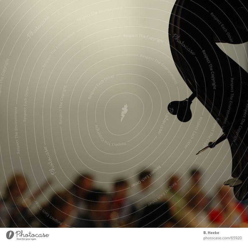Orchesterwirbel Musik Kultur Student tief Musiker Schnecke Musikinstrument Klassik Orchester Hörsaal Kontrabass Freiraum musizieren akustisch Engagement Streichinstrumente