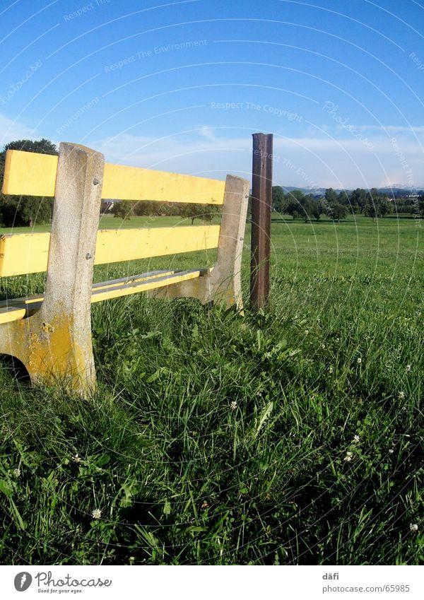 Sitz! Himmel grün blau gelb Erholung Wiese Gras Feld sitzen Pause Bank Schweiz Pfosten Aufenthalt hocken