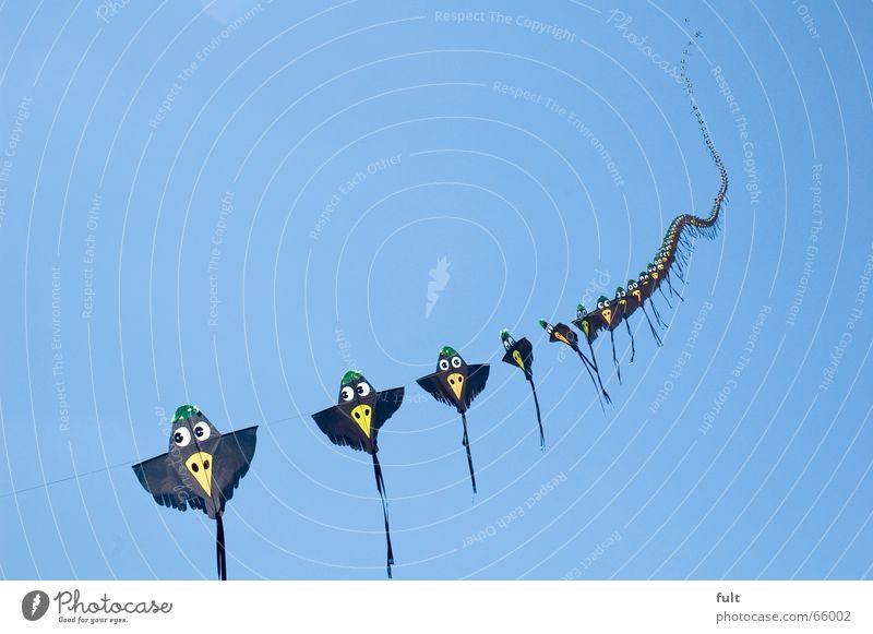 drachen1 Windspiel Freizeit & Hobby Drachenfest hintereinander fliegen Seil Freude Münster Himmel blau Reihe oben Bewegung