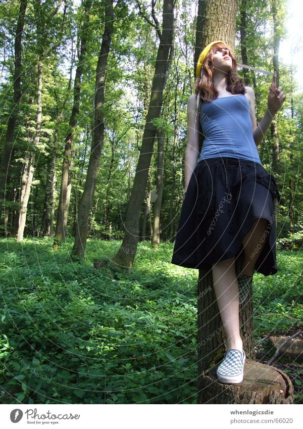 Darling 2 Baum grün Sommer Wald Zufriedenheit Hut