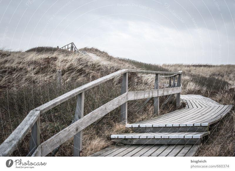 Sylt XIII Umwelt Natur Landschaft Himmel Gras Nordsee Meer Düne Dünengras Deutschland Europa Treppe Sand Holz gehen blau braun grau Treppengeländer Ferne