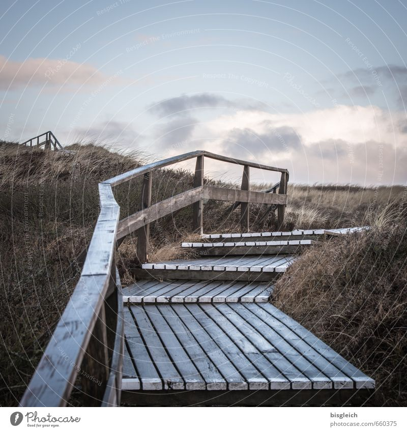 Sylt XV Ferien & Urlaub & Reisen Strand Meer Insel Umwelt Natur Landschaft Himmel Gras Nordsee Deutschland Europa Treppe Treppengeländer Holz blau braun grau