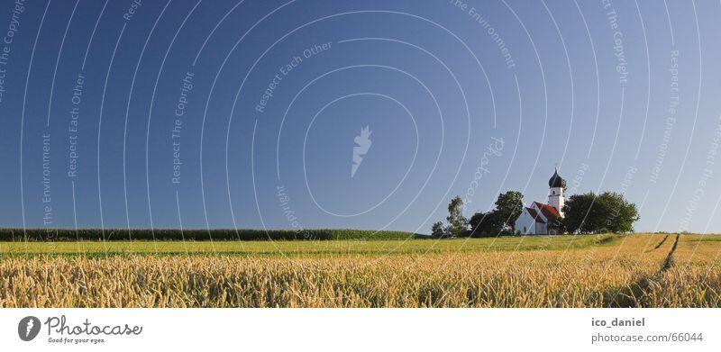 Idylle in Niederbayern ruhig Sommer Landschaft Himmel Horizont Schönes Wetter Baum Gras Wiese Feld Kirche klein blau gelb grün Einsamkeit Volksglaube