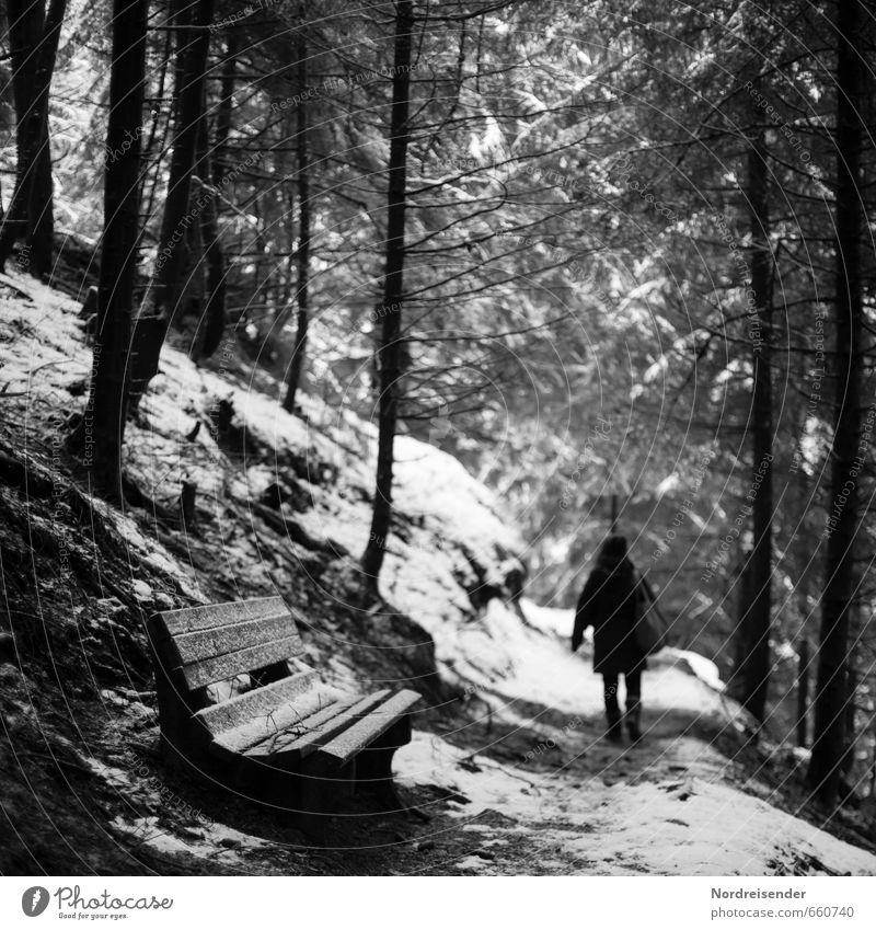 Wer ist da....? Mensch Frau Winter dunkel Wald Erwachsene Schnee Wege & Pfade Eis Angst laufen wandern Ausflug Frost Bank gruselig