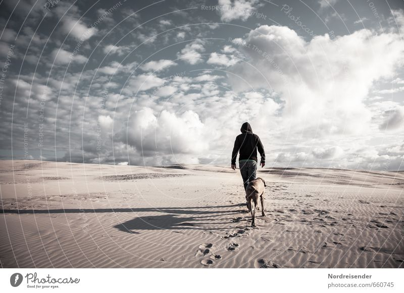Immer weiter... Mensch Himmel Hund Mann Landschaft Wolken Tier Erwachsene Wege & Pfade Lifestyle Sand Erfolg laufen Abenteuer Coolness Hoffnung