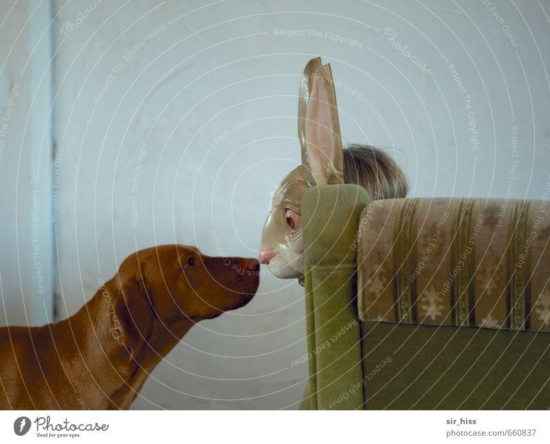 STUDIO TOUR | Begegnung Hund Mensch grün Tier Gesicht Leben lustig außergewöhnlich braun Angst Nase berühren Maske Küssen Verliebtheit Geruch