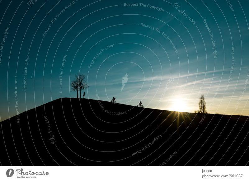 Gipfeltreffen Freizeit & Hobby Mensch 3 Landschaft Himmel Wolken Sonne Sonnenaufgang Sonnenuntergang Sonnenlicht Schönes Wetter Baum Hügel Fahrradfahren stehen