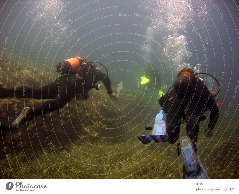 Mallorca - Party Unterwasser tauchen Taucher Tauchgerät Luftblase Algen grün diver diving Unterwasseraufnahme underwater buddy bubbles Schwimmhilfe fins blau