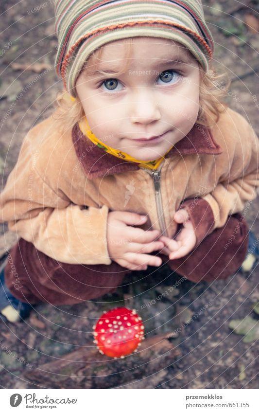 Mensch Kind schön Sommer rot Mädchen Wald Herbst klein oben natürlich braun blond Kindheit sitzen authentisch