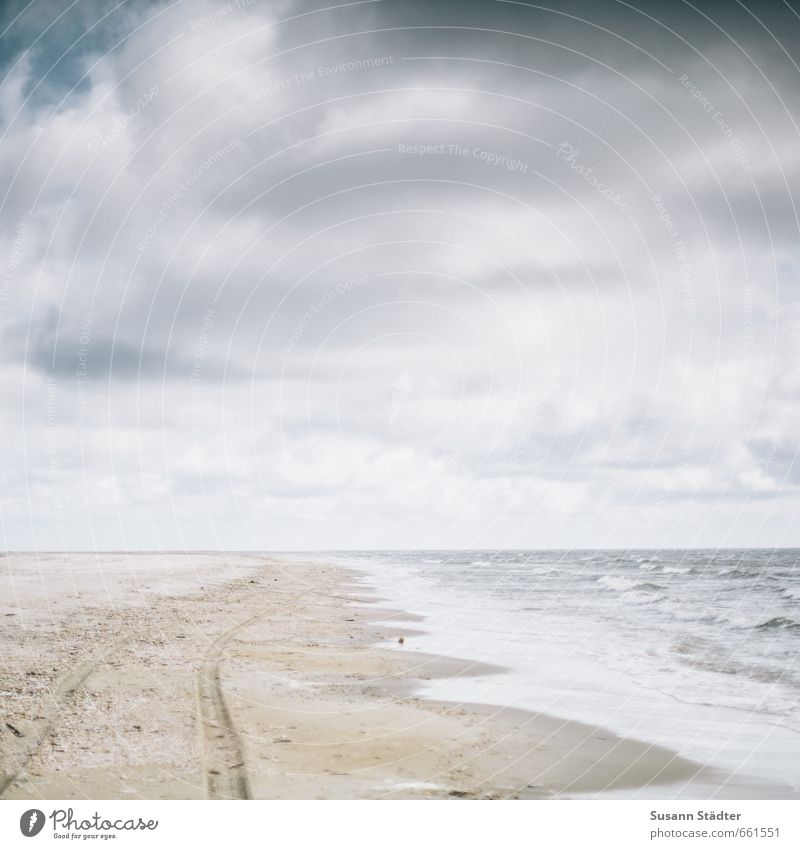 rømø | . Himmel Meer Wolken Ferne Strand Küste Sand Horizont Kraft Wellen Erfolg wandern Insel Schönes Wetter Hoffnung Spuren