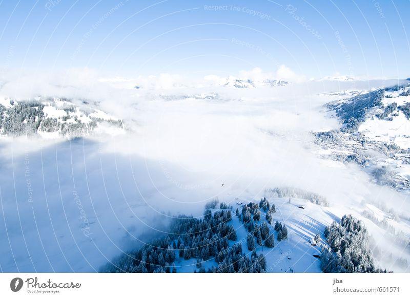 der erste Flug II Natur Erholung Landschaft ruhig Wolken Winter Berge u. Gebirge Leben Schnee Sport Freiheit Luft fliegen Freizeit & Hobby Nebel Zufriedenheit
