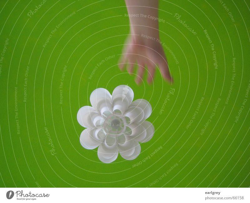 Hansen's Grün II [Fang das Licht...] grün Stil Raum weiß Design Lampe Hand Pflanze abstrakt satt Bewegungsunschärfe ikea modern Decke Schweden fangen austrecken