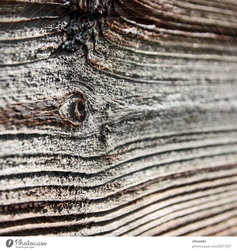 wood Natur Baum Holzbrett Linie braun Astloch Maserung Farbfoto Gedeckte Farben Außenaufnahme abstrakt Muster Strukturen & Formen Textfreiraum rechts