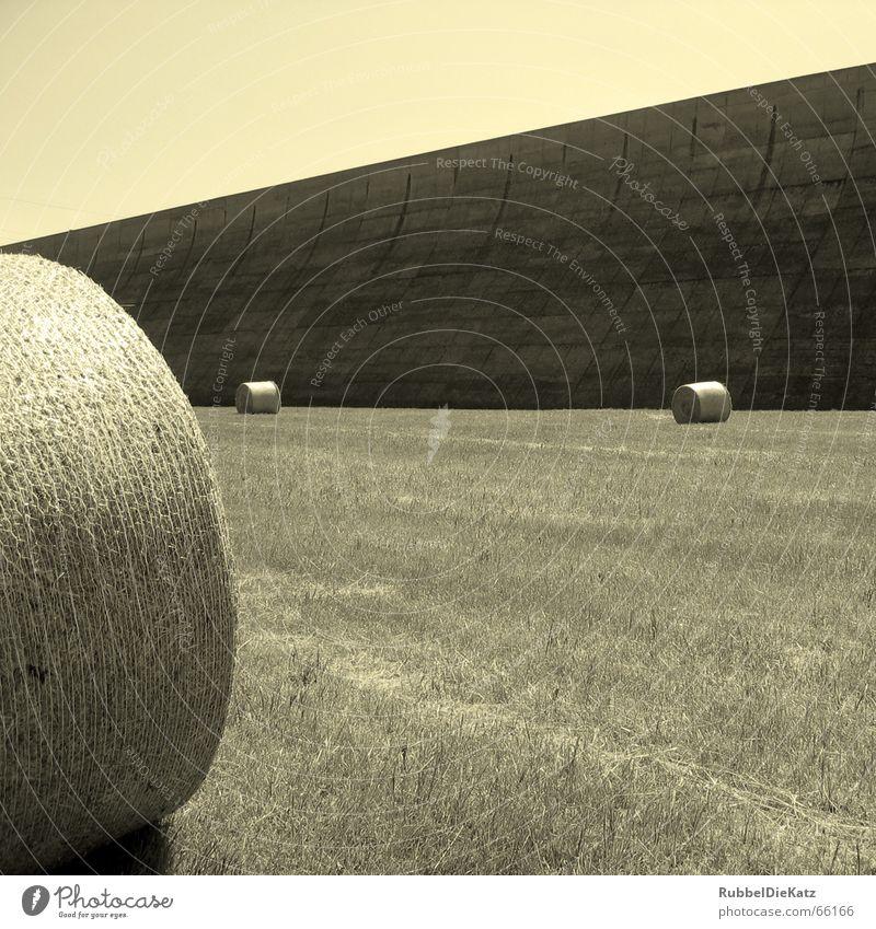 Mauer, Rollen und falsche Farbe weiß schwarz Wiese Beton Industriefotografie Landwirtschaft Schönes Wetter Ödland Stroh Strohballen Wasserbecken