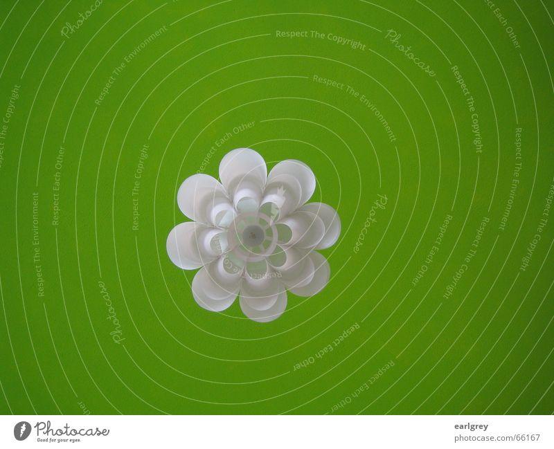 Hansen's Grün III weiß grün Pflanze Lampe Stil Raum Design modern rein Decke Schweden satt