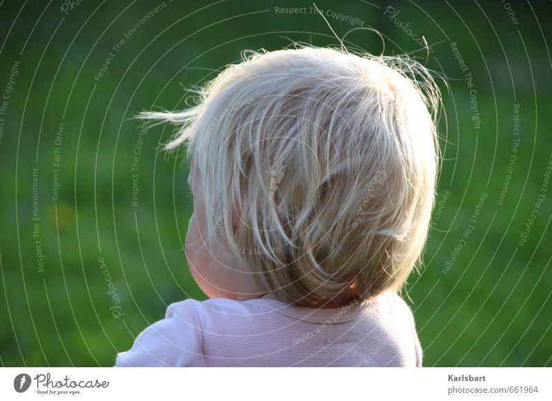 Rückblick Kindererziehung Bildung Kindergarten Kleinkind Mädchen Junge Kindheit Hinterkopf 1-3 Jahre Natur Frühling Sommer Schönes Wetter Wiese blond beobachten