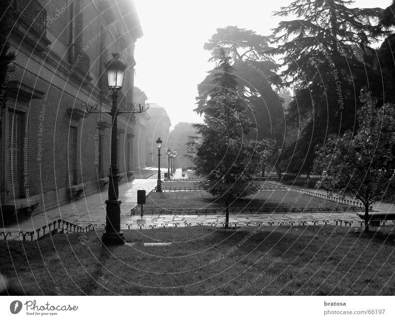 The Foggy Madrid Freude Angst Tourismus Lebensfreude Konzentration historisch exotisch Museum Nacht Madrid Bodennebel