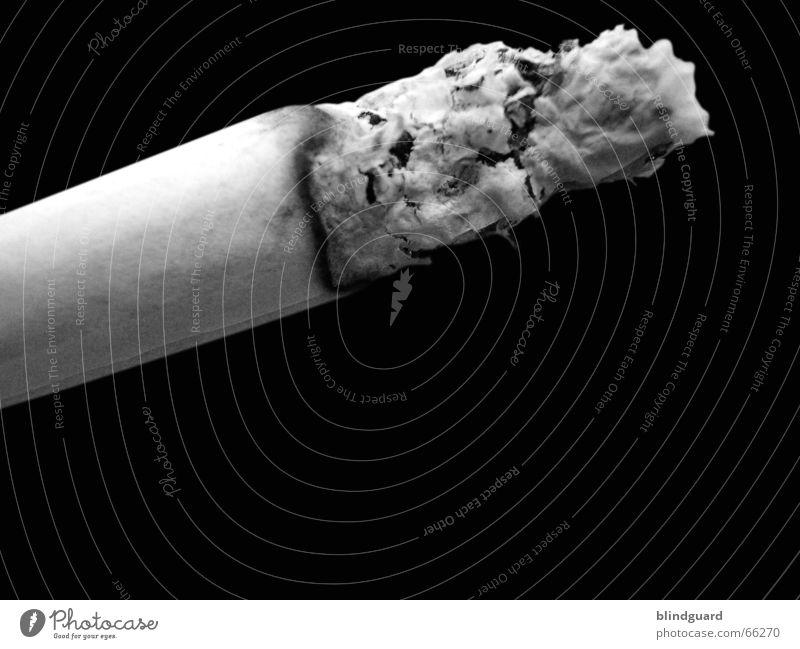 Take it or leave it Zigarette Rauschmittel Nikotin Teer Tabak Rauchen teuer Glut brennen Übelriechend Makroaufnahme Vor dunklem Hintergrund Freisteller