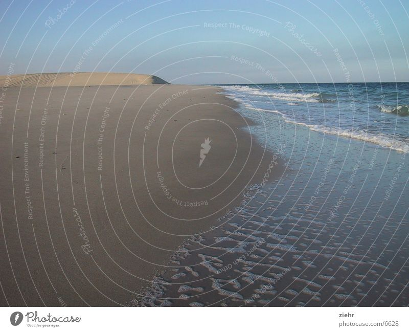 Wüstenstrand Meer heiß Strand Einsamkeit Sand Wasser Sonne Stranddüne