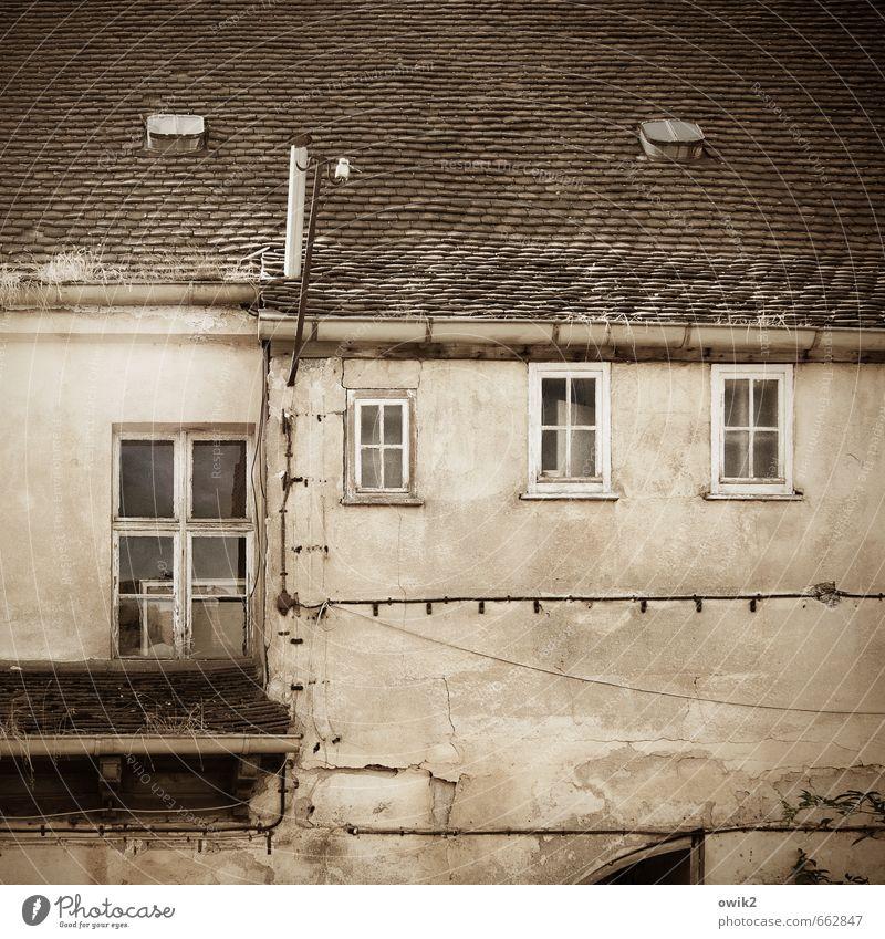 VIP-Lounge Haus Mauer Wand Fassade Fenster Dach Dachziegel Dachfenster Dachrinne Kabel Schornstein alt historisch hoch oben Verfall Vergangenheit