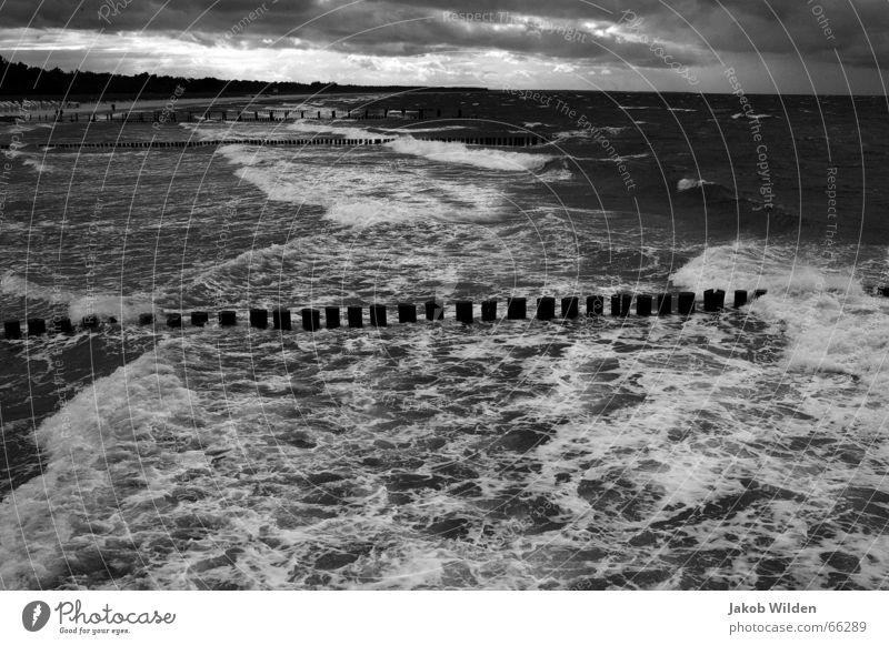 Wellen zügellos Sturm wüst bedrohlich Gischt weiß hart Schaum Herbst ungemütlich kalt nass Wildtier Wind Natur digitale aussenaufnahme