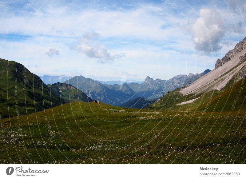 fernweh Himmel Natur Pflanze blau grün Sommer weiß Blume Landschaft Wolken Tier schwarz Berge u. Gebirge Umwelt Wiese Gras
