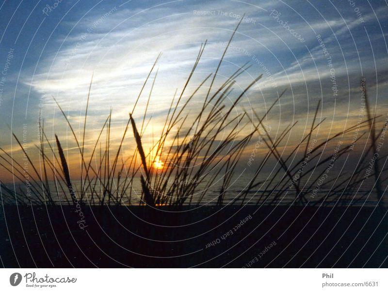 Strand Sonnenuntergang Meer Dänemark