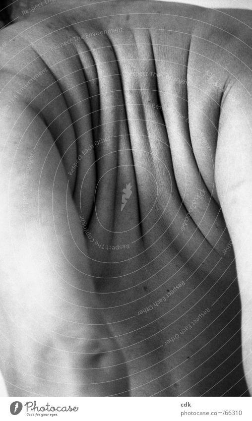 und jetzt ziehen wir die Schulterblätter fest zusammen und ... Mensch schön Erholung nackt Bewegung Linie hell Feste & Feiern Gesundheit Körper Rücken Arme Haut