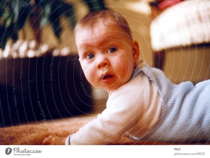 Phil' Baby krabbeln Kind klein Kleinkind süß Teppich Mensch Blick Fragen