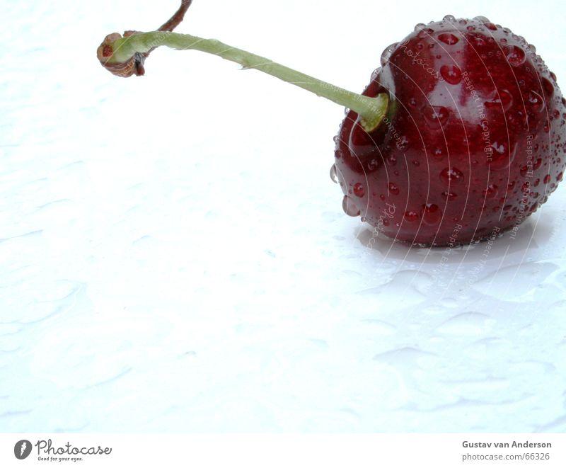Süße Verführung 1 Wasser weiß Baum rot Sommer kalt Gesundheit nass Wassertropfen frisch süß Frucht heiß Wut Süßwaren Ernte