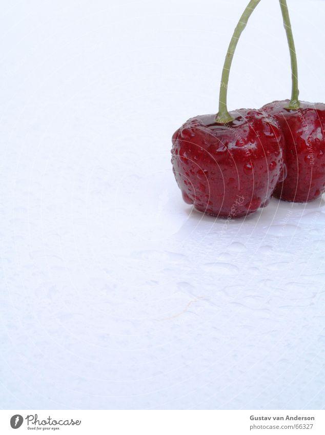 Süße Verführung 2 Wasser weiß Baum rot Sommer kalt Gesundheit nass Wassertropfen frisch süß heiß Wut Süßwaren Ernte genießen