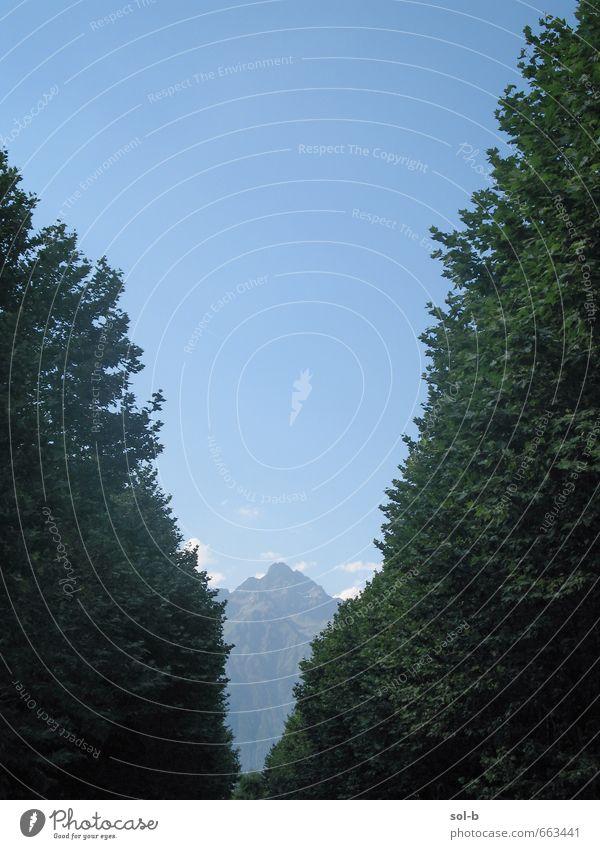 Natur Ferien & Urlaub & Reisen Baum Ferne Berge u. Gebirge Umwelt Leben Freiheit Luft Lifestyle Tourismus wandern Schönes Wetter Ausflug einzigartig Abenteuer