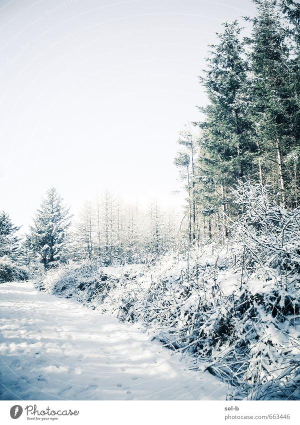 O | weiß Leben harmonisch Sinnesorgane ruhig Ferien & Urlaub & Reisen Ausflug Abenteuer Winter Berge u. Gebirge wandern Umwelt Natur Wolkenloser Himmel Wetter