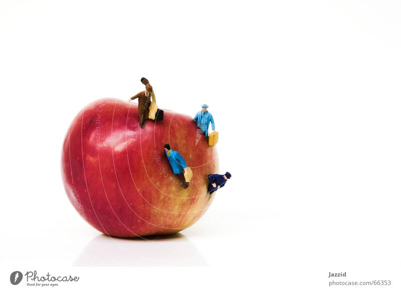 Menschenwürmer Mensch Pflanze rot Ferien & Urlaub & Reisen Ernährung Leben Frucht Apfel Stillleben Surrealismus falsch seltsam kommen Wurm
