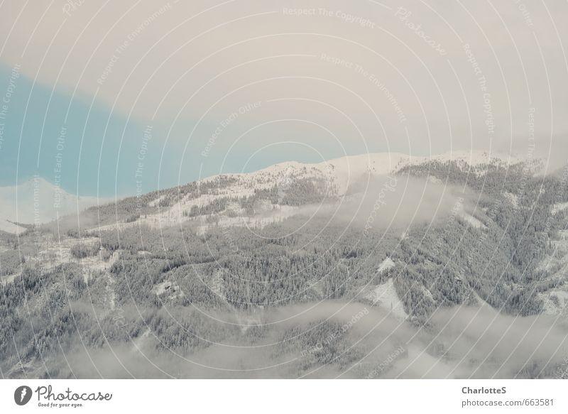 Nebelschwaden II Landschaft Wolken Schönes Wetter Schnee Wald Hügel Alpen Gipfel Schneebedeckte Gipfel wandern warten Unendlichkeit blau ruhig kalt Österreich