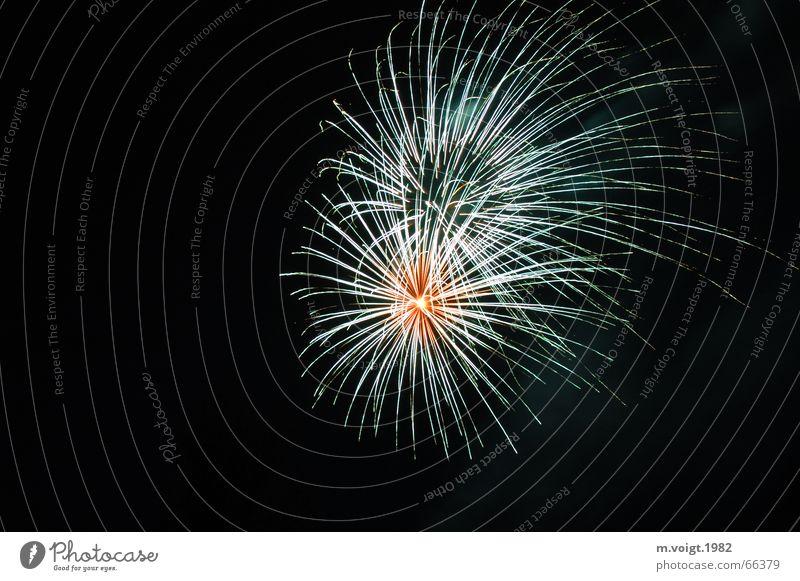 Stachlig schön Freude schwarz Party Glück träumen Feste & Feiern elegant Erfolg Beginn ästhetisch Silvester u. Neujahr Wunsch Feuerwerk stachelig Explosion