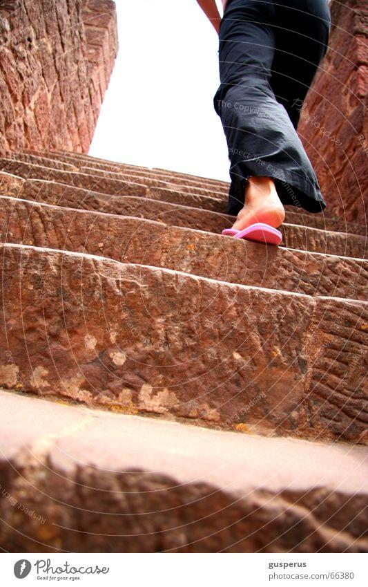 { der weg nach oben } aufsteigen hart hoch fertig Arbeit & Erwerbstätigkeit Treppe beschwerlich Wege & Pfade sich nichts schenken upstairs unzufreiden