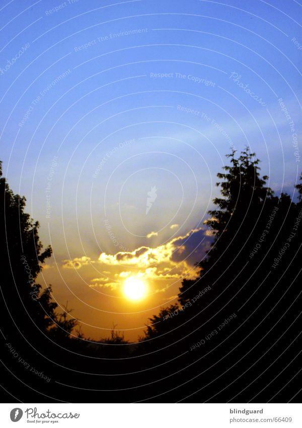 Wenn die Sonne schlafen geht dunkel Sonnenuntergang Sonnenstrahlen Wolken glühen Feuerball gelb rot Romantik Stimmung Himmel bäume schatten orange blau