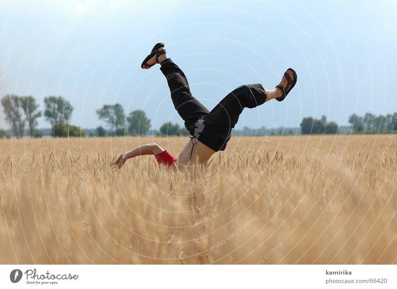 diving Sommer Freude springen Tanzen Feld Kornfeld Handstand