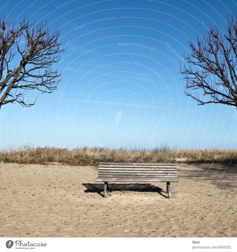 Zukunft l alles ist offen Himmel Natur Baum Erholung Landschaft Winter Strand Umwelt Küste Sand Zufriedenheit sitzen Insel Schönes Wetter Beginn genießen