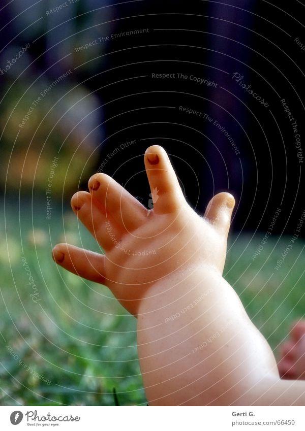 hands up, baby Hand Baby Kleinkind Finger Zeigefinger Daumen Hautfarbe Wiese Gras Unterarm heben patschhändchen Puppe Statue hand ausstrecken helping hand