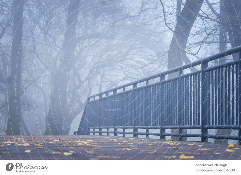 Ein Herbstmorgen Umwelt Nebel Park Brückengeländer Wege & Pfade außergewöhnlich bedrohlich dunkel gruselig kalt trist blau grau schwarz Langeweile Traurigkeit