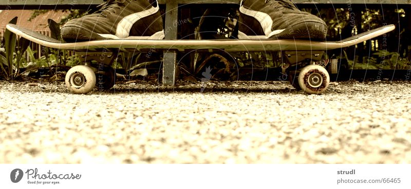 Rollbrett Jugendliche Freude Sport Freizeit & Hobby Skateboarding trendy