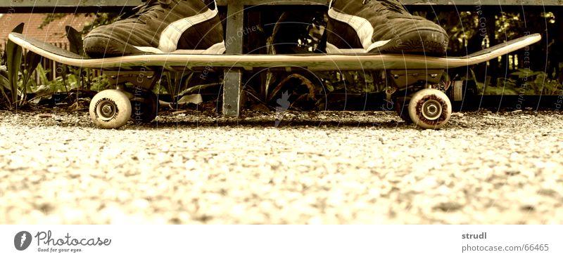 Rollbrett Jugendliche Freude Sport Freizeit & Hobby Skateboarding Skateboard trendy