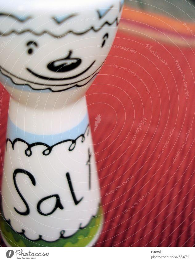 Salz weiß rot lachen Ernährung Lebensmittel Dekoration & Verzierung Kochen & Garen & Backen Kitsch Kräuter & Gewürze grinsen Bildausschnitt Anschnitt Kochsalz