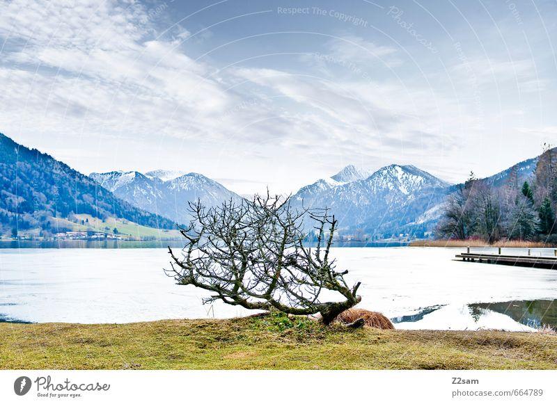 schliersee Umwelt Natur Himmel Wolken Winter Sträucher Wiese Alpen Berge u. Gebirge Seeufer einfach kalt nachhaltig natürlich trist blau grau Einsamkeit