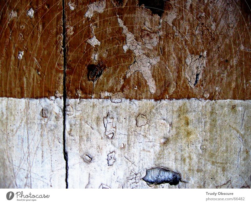 making the nature scene I Holz einzeln Holzbrett Teilung Material Trennung Oberfläche Balken